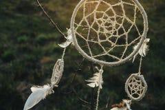 Смертная казнь через повешение Dreamcatcher от дерева в поле на заходе солнца Стоковое Изображение RF