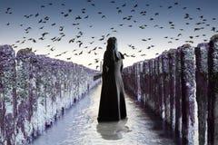 смерть Стоковые Фотографии RF