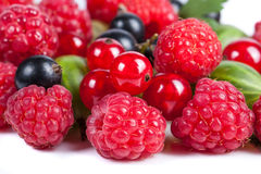 Смесь зрелых сочных плодоовощей и ягод на белой предпосылке Поленики, смородины, конец-вверх крыжовников Красивый ба плодоовощ Стоковая Фотография RF