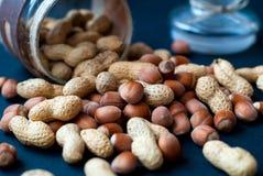 Смесь фундуков и арахисов на темноте Стоковая Фотография RF