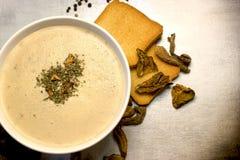Сметанообразные суп гриба и здравица, здоровая вегетарианская еда стоковое изображение