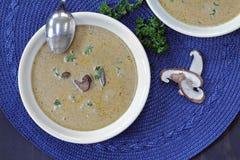 сметанообразный суп гриба Стоковое Фото