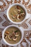 сметанообразный суп гриба суп гриба Стоковое Изображение RF