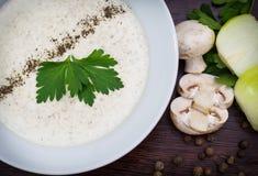 сметанообразный суп гриба Стоковые Фото