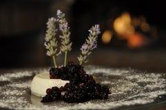 сметанообразный десерт Стоковое Изображение