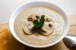 Сметанообразный pureed суп гриба стоковые изображения rf