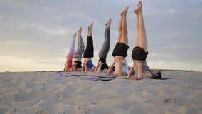 Смешанная группа лицо одной расы людей работая ратника фитнеса образа жизни йоги здорового представляет сток-видео