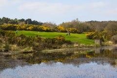 Смешанная пара стареть молодые игроки в гольф дилетанта кладя вне на девятый зеленый цвет международного курса Dufferin класса на стоковые изображения