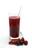 смешанная ягода Стоковое Изображение