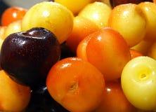 смешанные вишни Стоковое фото RF