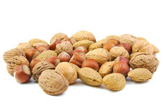 Смешанные гайки, грецкие орехи, миндалины и фундуки стоковые фото