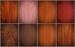 Смешанные деревянные текстуры Стоковые Изображения