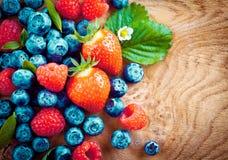 Смешанные зрелые ягоды осени Стоковая Фотография