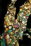 Смешанные кристаллы Стоковое Изображение