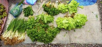 Смешанные овощи на местном новом рынке Стоковые Фото