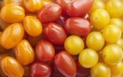 Смешанные разнообразия томатов вишни Стоковая Фотография RF