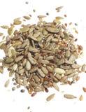 смешанные семена Стоковое Фото