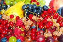 смешанные ягоды стоковое изображение