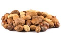 смешанные nuts раковины Стоковое Изображение