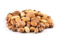смешанные nuts раковины Стоковая Фотография