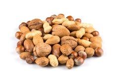 смешанные nuts раковины Стоковое Фото