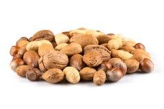 смешанные nuts раковины Стоковые Изображения RF