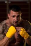 Смешанный боец боевых искусств готовый для боя Стоковая Фотография