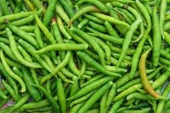 Смешанный зеленый chili для еды Стоковые Фото