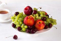 Смешанный комплект свежих сырцовых зрелых плодоовощей Стоковая Фотография RF