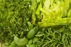 Смешанный крупный план салатов Стоковое Изображение