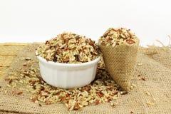 Смешанный одичалый органический коричневый рис Стоковое фото RF