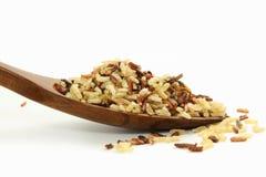 Смешанный одичалый органический коричневый рис Стоковое Изображение RF