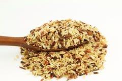 Смешанный одичалый органический коричневый рис Стоковые Изображения RF