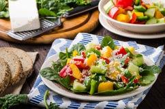 Смешанный салат, vegetable салат Стоковые Фотографии RF