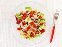 Смешанный салат, салат, radicchio, фенхель, томаты pachino Стоковые Изображения RF
