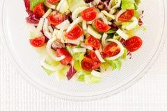 Смешанный салат, салат, radicchio, фенхель, томаты pachino Стоковое Изображение RF