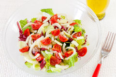 Смешанный салат, салат, radicchio, фенхель, томаты pachino Стоковые Фото