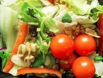 Смешанный салат, томаты, гайки, имбирь Стоковое Изображение