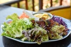 Смешанный vegetable салат Стоковые Изображения RF