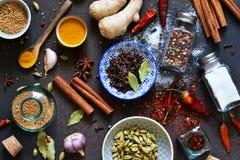 Смешивание азиатских специй: chili, имбирь, чеснок, кардамон, циннамон стоковые изображения rf