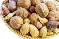 Смешивание грецкого ореха, бразильской гайки, фундука, пекана, миндалины изолировано Стоковые Изображения