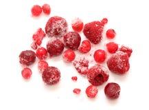 Смешивание замороженных красных плодоовощей Стоковые Фото