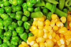 Смешивание замороженных овощей как предпосылка стоковое изображение rf
