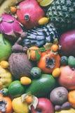 Смешивание зрелых тропических плодоовощей с манго авокадоа, кумкватом, кивиом, цитрусом Предпосылка Superfood Вегетарианская сырц Стоковые Фото
