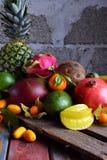 Смешивание зрелых тропических плодоовощей с манго авокадоа, кумкватом, кивиом, цитрусом Предпосылка Superfood Вегетарианская сырц Стоковая Фотография