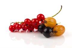 Смешивание изолированных ягод Стоковое Фото
