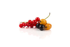Смешивание изолированных ягод Стоковое фото RF