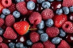 Смешивание крупного плана ягод красочное сортированное стоковые изображения