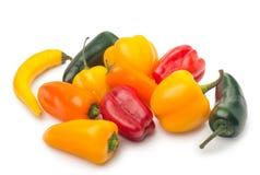 смешивание младенца habanero перца chili, изолированное на белой предпосылке Стоковые Фотографии RF