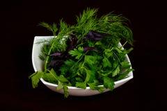 Смешивание плиты трав стоковое изображение